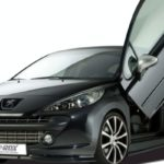 Peugeot 207 by RDX